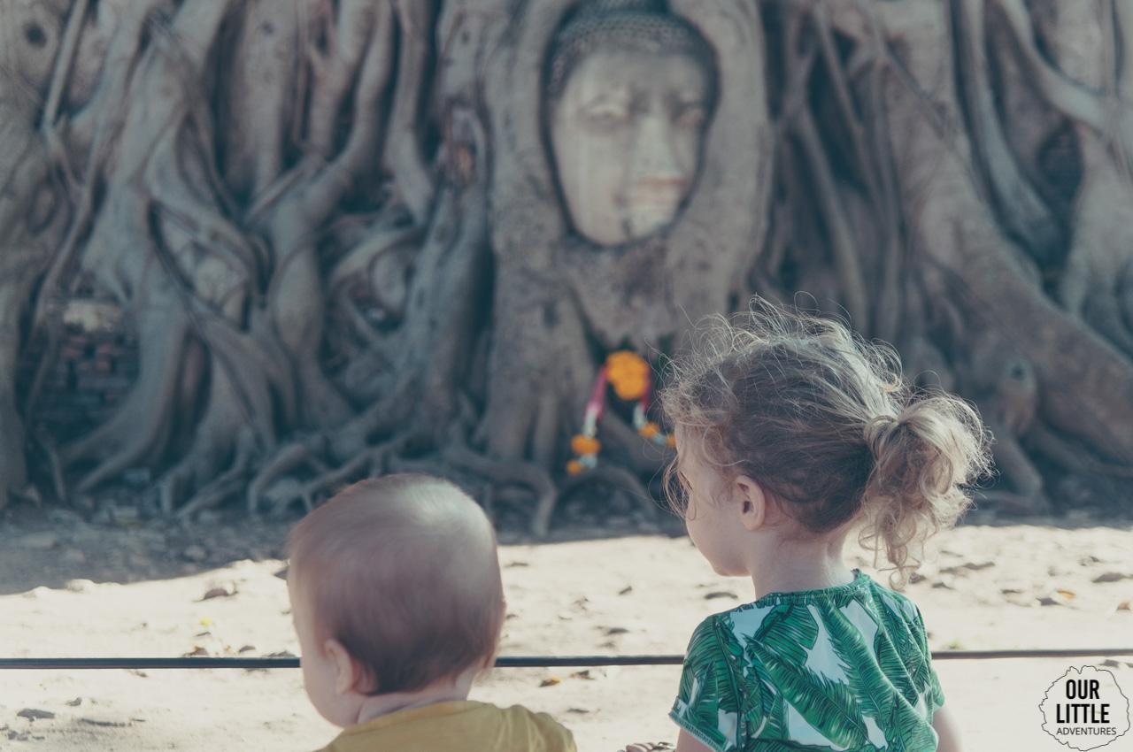 Zakorzeniona głowa Buddy w Wat Maha That