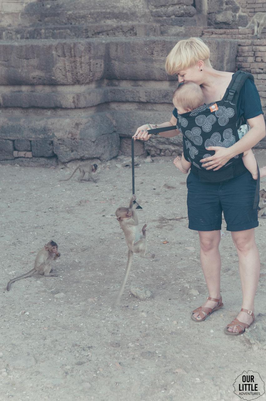 Małpa uczepiona nosidełka Tula