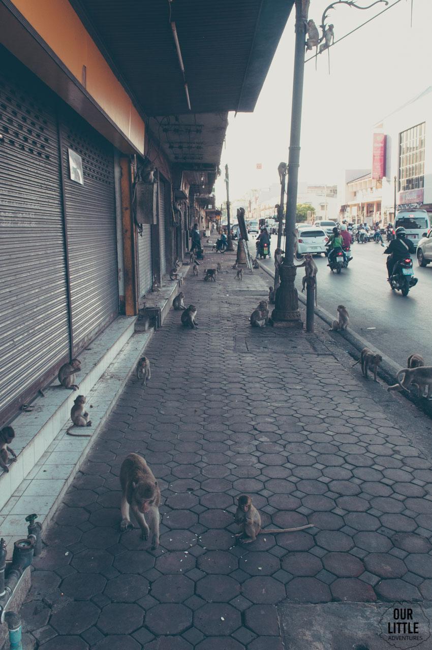 mały na ulicach Lopburi
