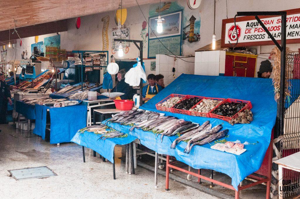 Targ rybny w Valapraiso