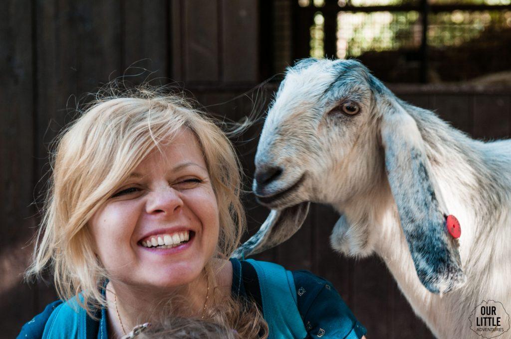 Karolina uśmiechnięta bo koza z zoo w Tel-Awiwie próbuje ją polizać po uchu