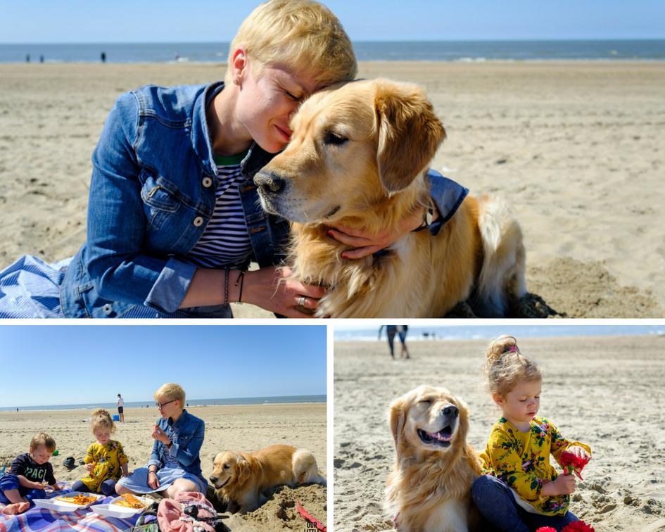 Pies z rodziną na plaży, Co zrobić z psem na wakacje? Our Little Adventures