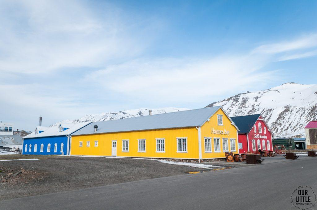 widok na żółty dom Hannes Bay w Siglufjordur