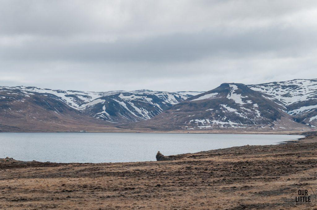 stepowy krajobraz Islandii