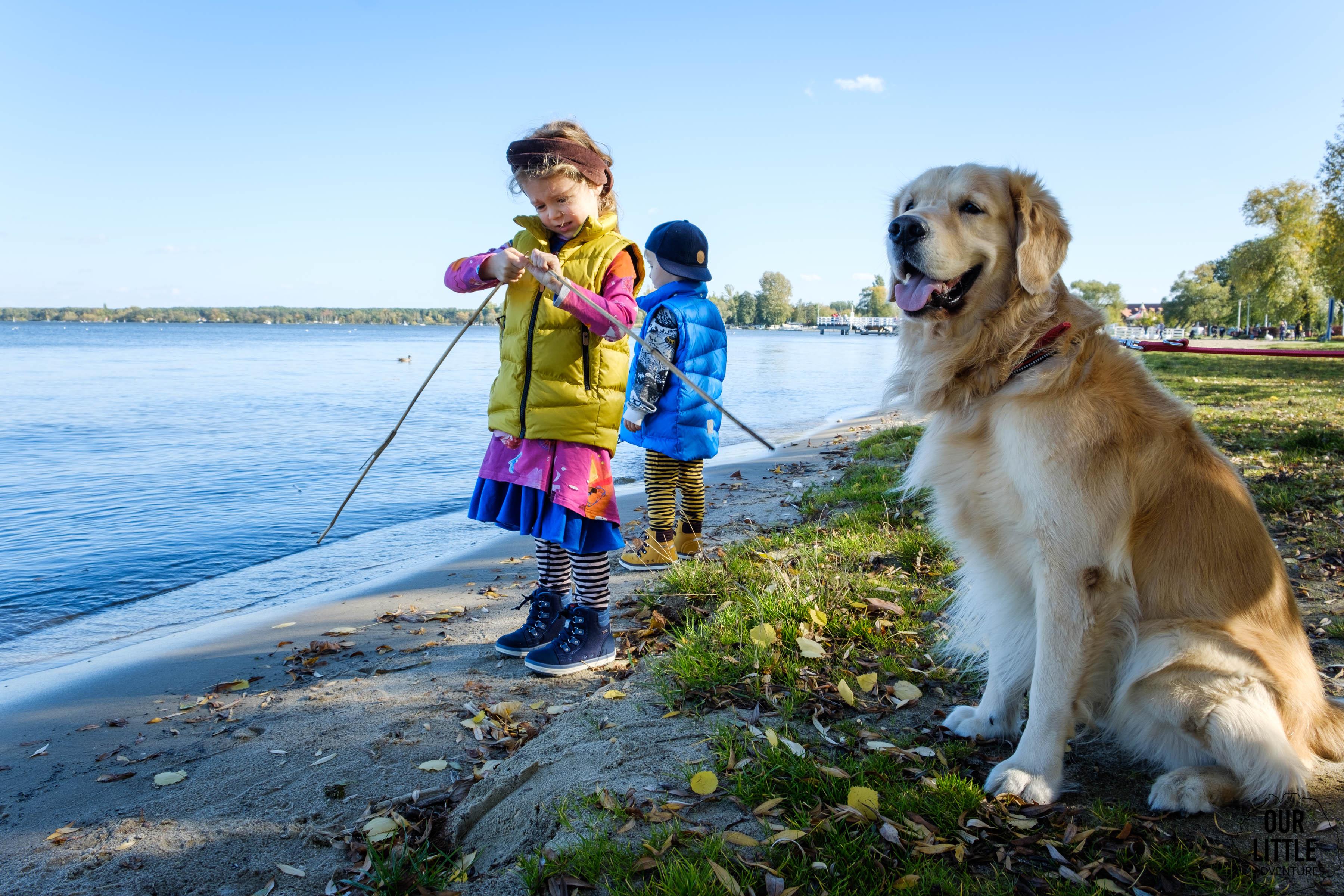 Dzieci z psem nad jeziorem, golden retriever, Co zrobić z psem na wakacje