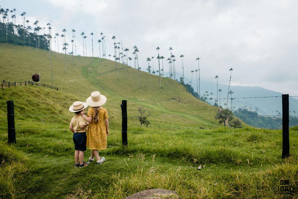 Dzieci patrzą na woskowe palmy w Valle de Cocora