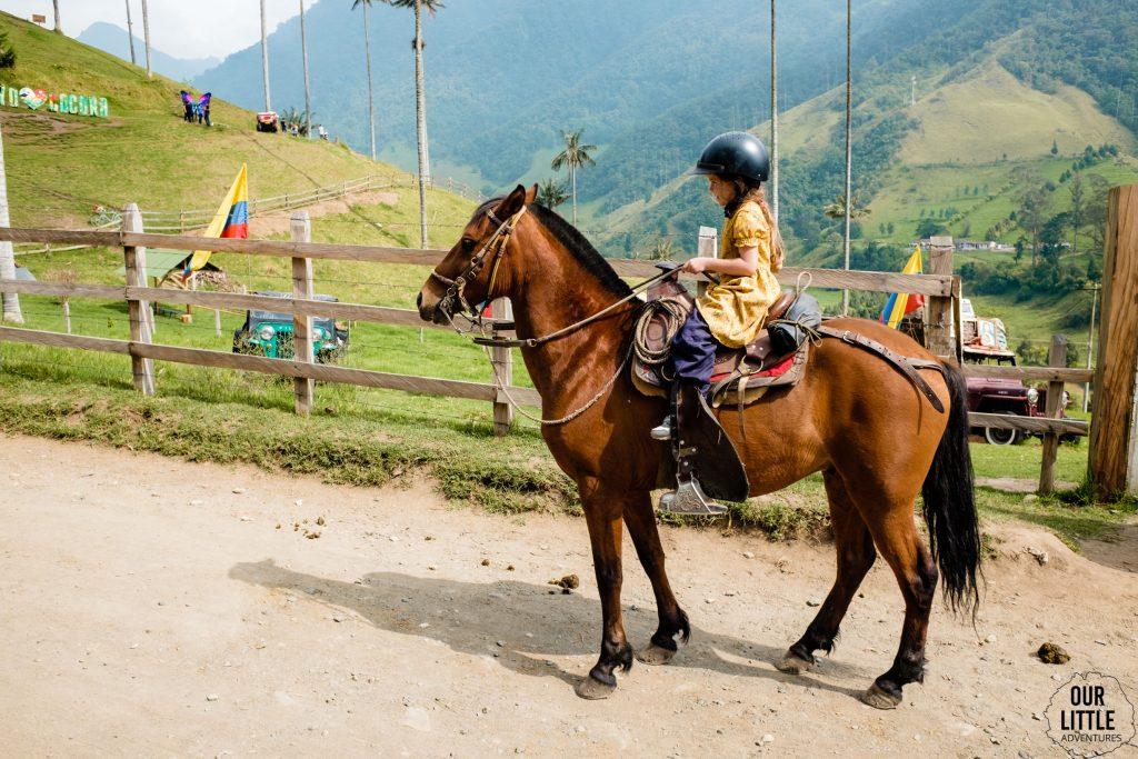 Mania na koniu w Valle de Cocora