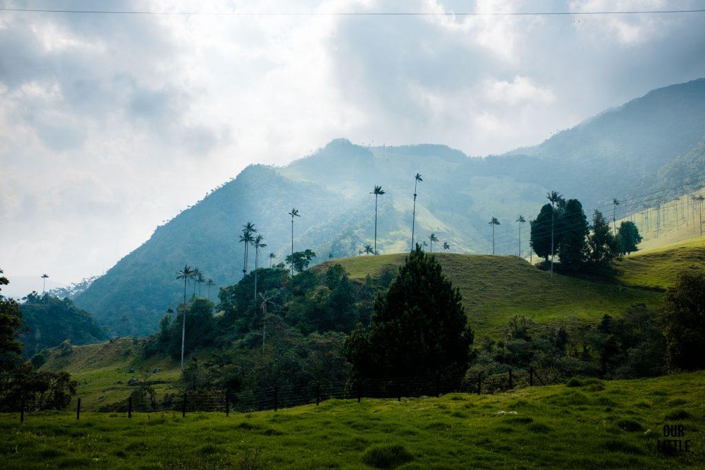 Widok na wzgórze i plamy woskowe