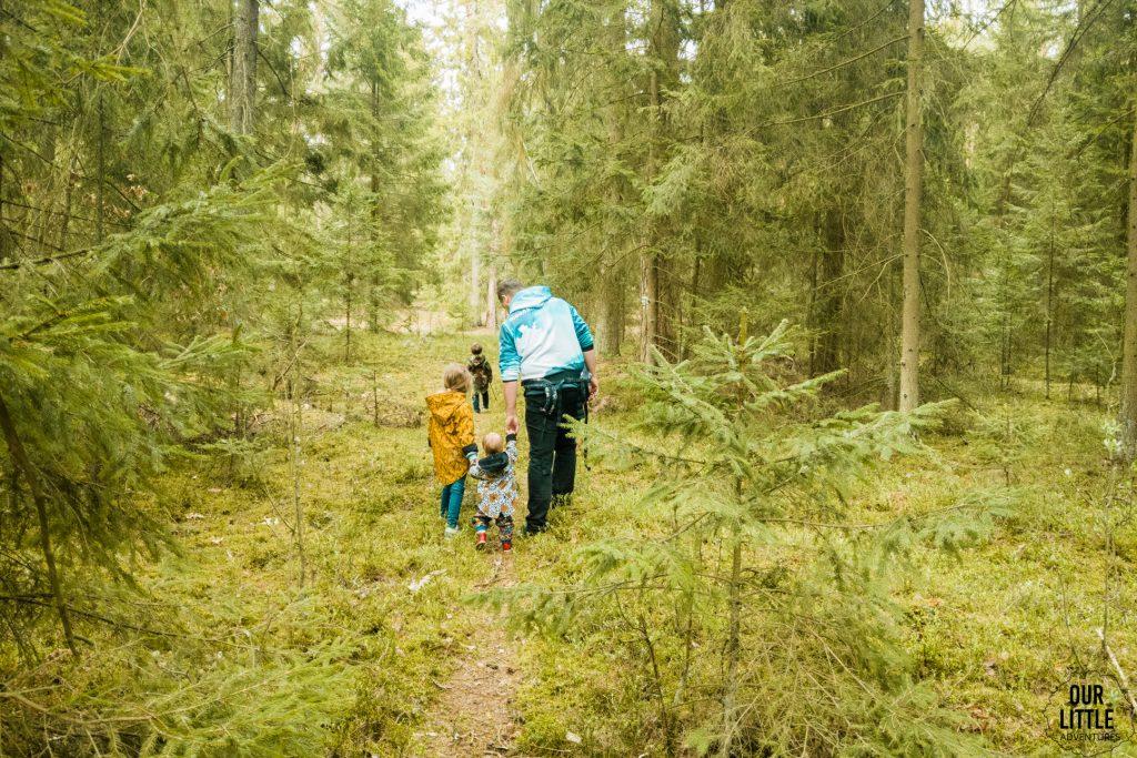 Mario z Manią i Basią idą szlakiem zielonym w Puszczy Zielonej