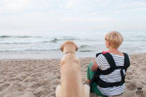 Kobieta, pies Golden Retriver oraz dziecko w nosidle siedzą na plaży we Władysławowie