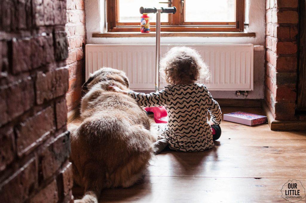 Mania patrzy przez okno siedząc na ziemi obok psa