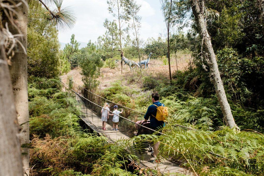 Dżungla w Parku Gondava