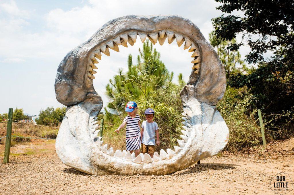 Wielkie szczęki dinozaura w Parku Gondava