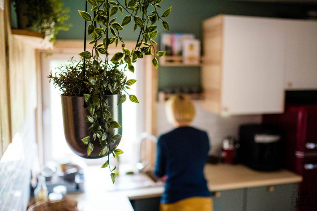 Domek na roztoczu - Las Zielone