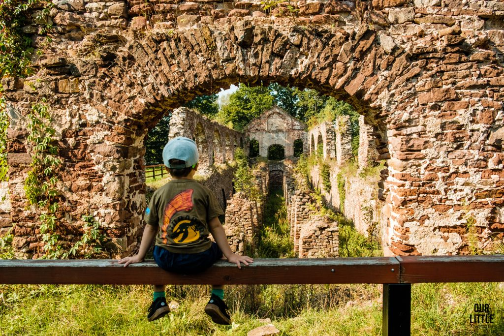 Ruiny zakładu hutniczego w Bobrzy