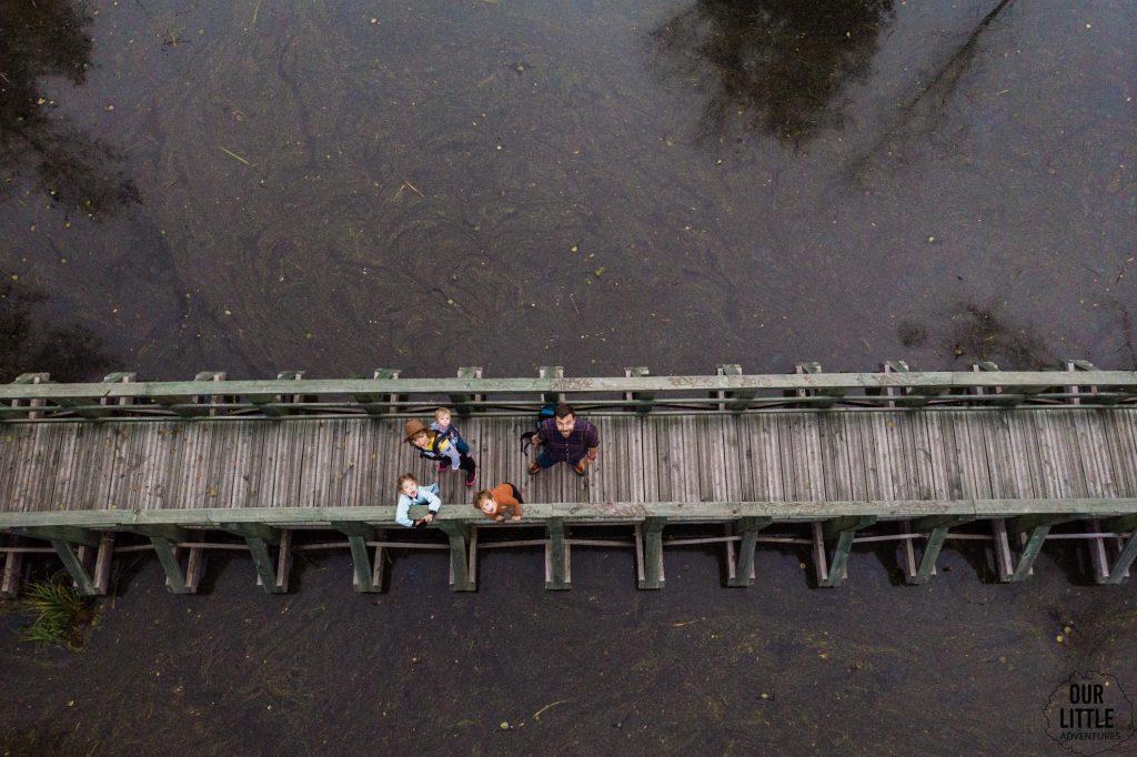 Pomost - ścieżka edukacyjna na Bagno Całowanie