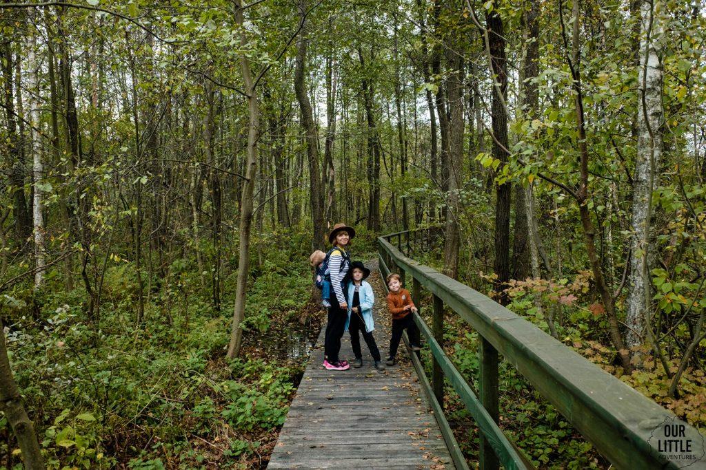 Bagna Całowanie -główna ścieżka przyrodnicza, pomost