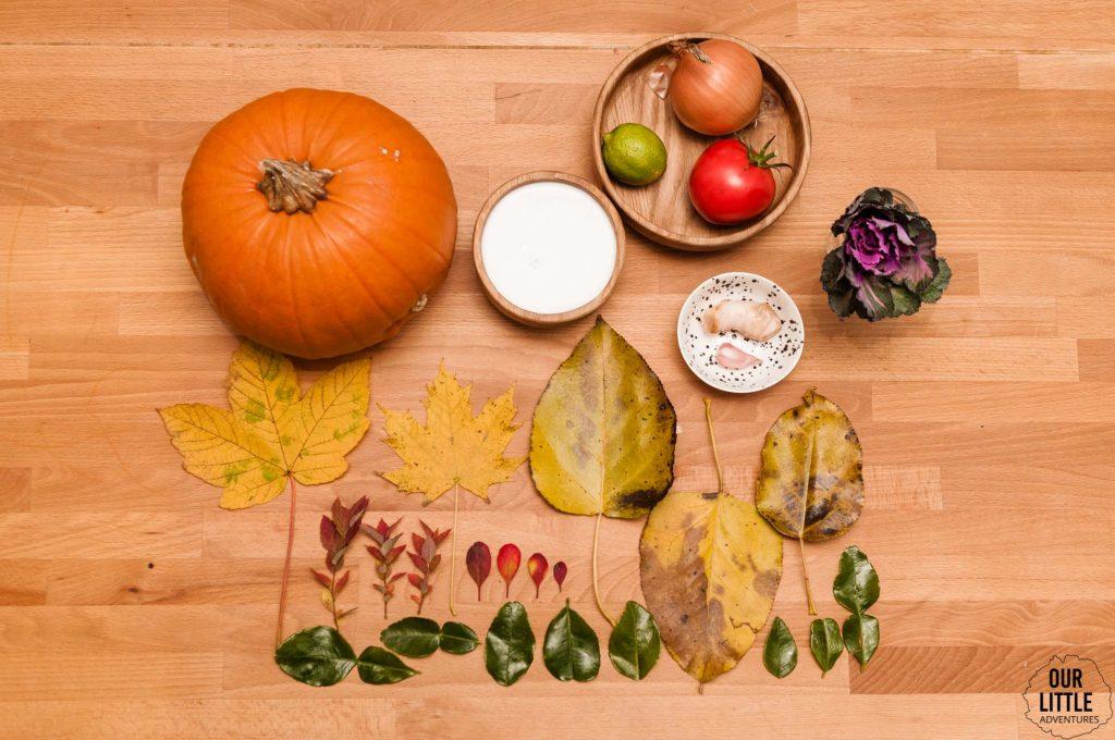 Produkty na zupę dyniową