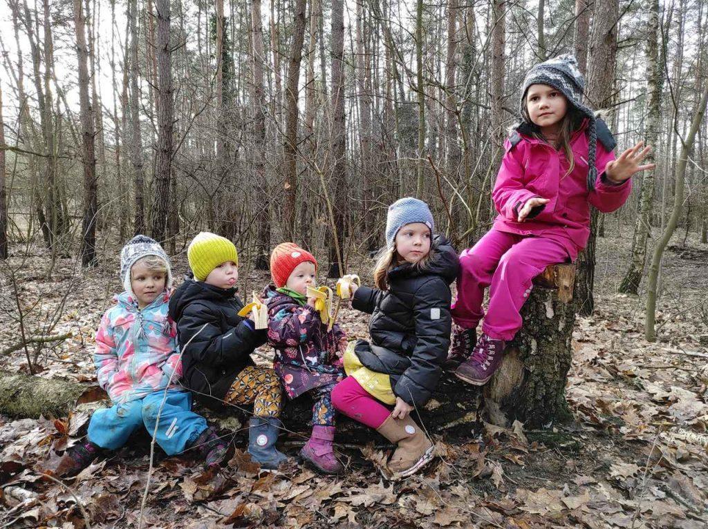 Dzieci siedzące na pniu drzewa w Rezerwacie Meteoryt Morasko