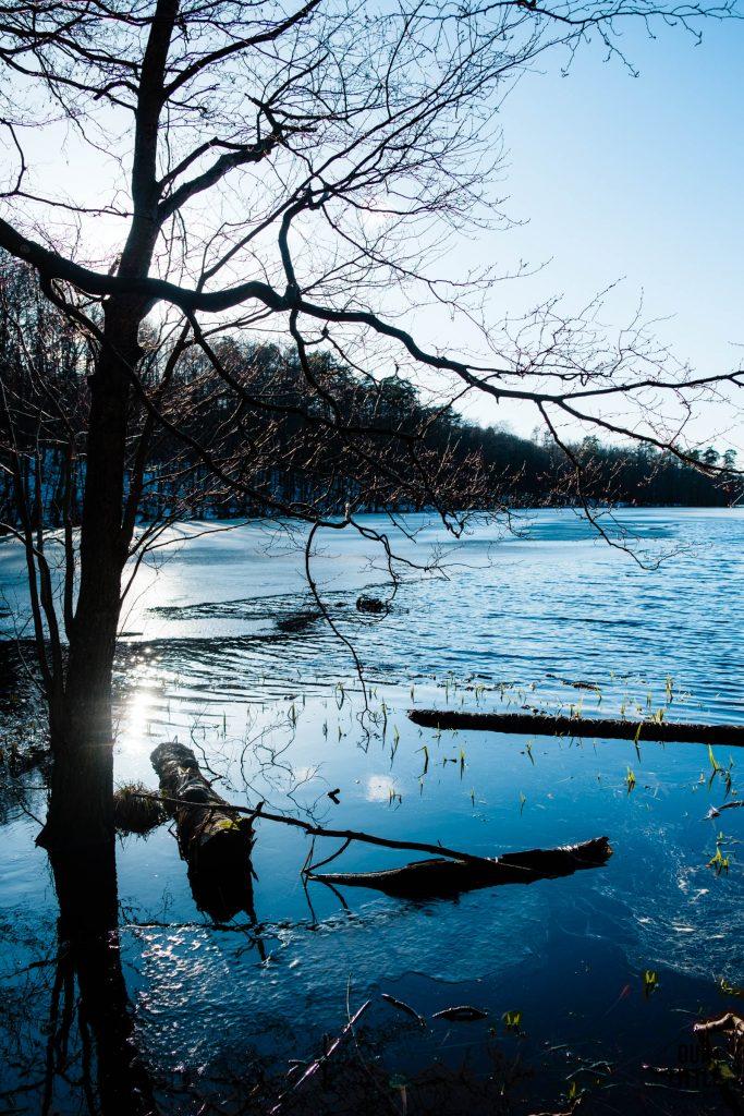spacer dookoła jeziora Lubogszcz