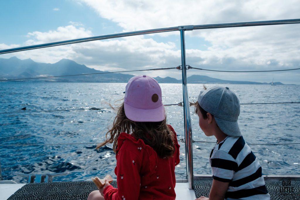 wycieczka katamaranem na delfiny - Teneryfa