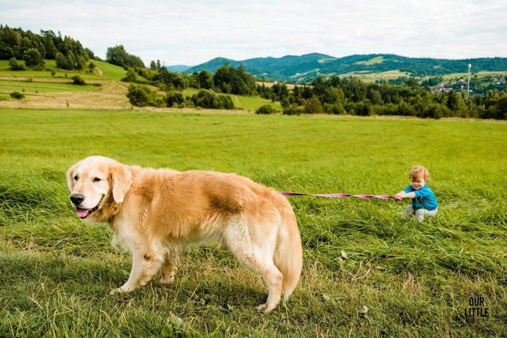 Rabka Zdrój atrakcje dla dzieci, widok na Tatry i Gorce, Our Little Adventures