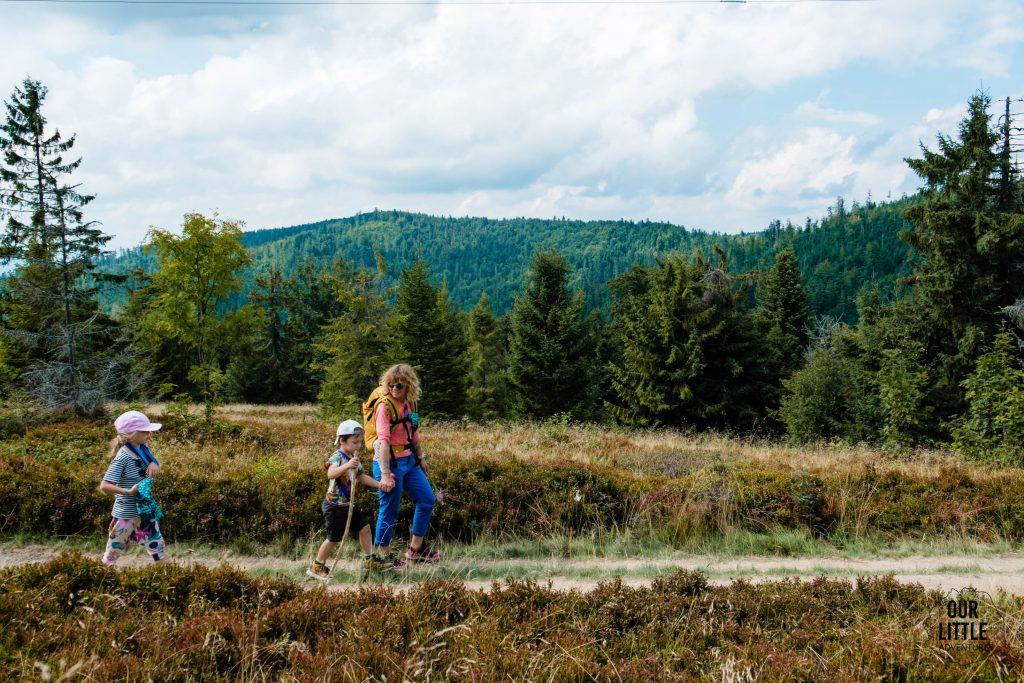 Turbacz z dzieckiem - rodzinny spacer na najwyższy szczyt Gorców - Our Little Adventures
